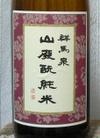 Gunmaizumi191018