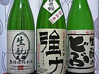 Hiokigoriki_251021
