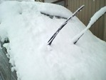 車の上の雪